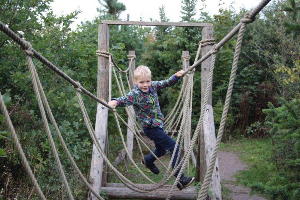 Survival run voor kinderen - Dinopark Tenaxx Groningen
