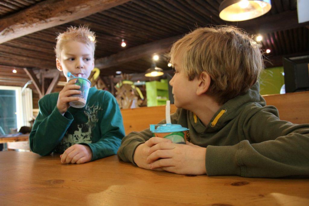 Zoo Bizar Dierentuin - Drenthe met kinderen uitjes
