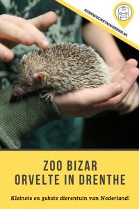 Zoo Bizar met kinderen - Budget uitje en kleinste dierentuin in Drenthe
