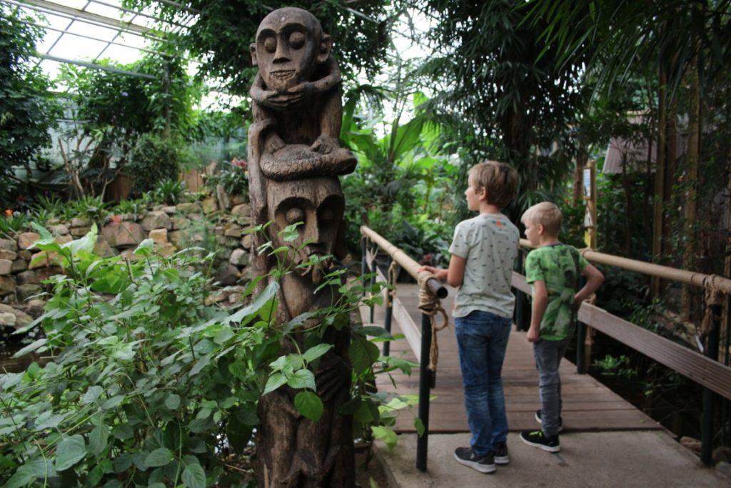 Berkenhof Tropical Zoo met kinderen in Zeeland - vlindertuin