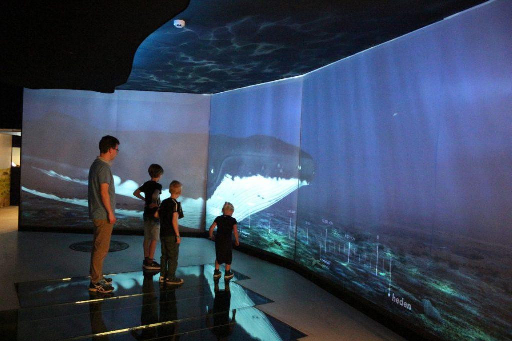 Natuurhistorisch Peel museum in Asten - Leukste uitje en museum in Noord-Brabant met kinderen