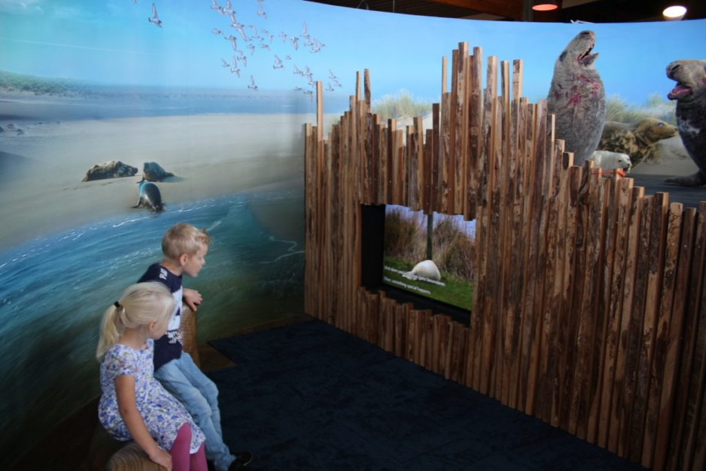 Zeehondencentrum Pieterburen educatief uitje met kinderen