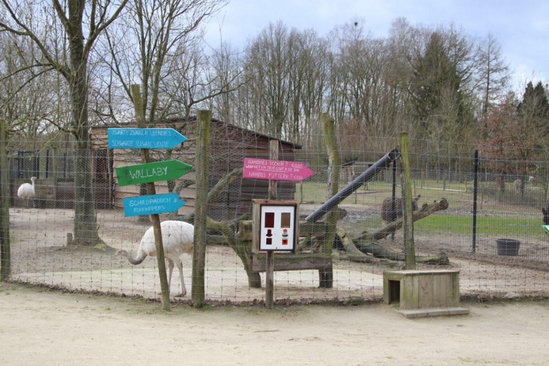 Review Hof van Eckberge met kinderen