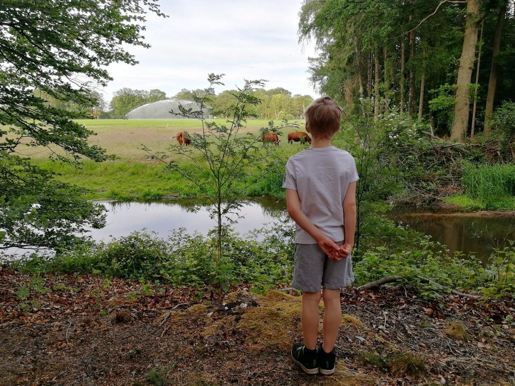 Landgoed Singraven - Wandelen in Beuningen - Fletcher Dinkeloord
