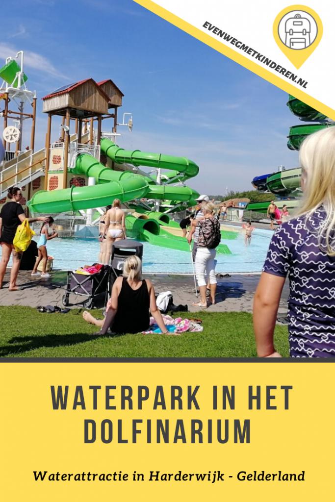 Waterpark Nederland Waterpret in Dolfinarium Harderwijk - Gelderland met kinderen