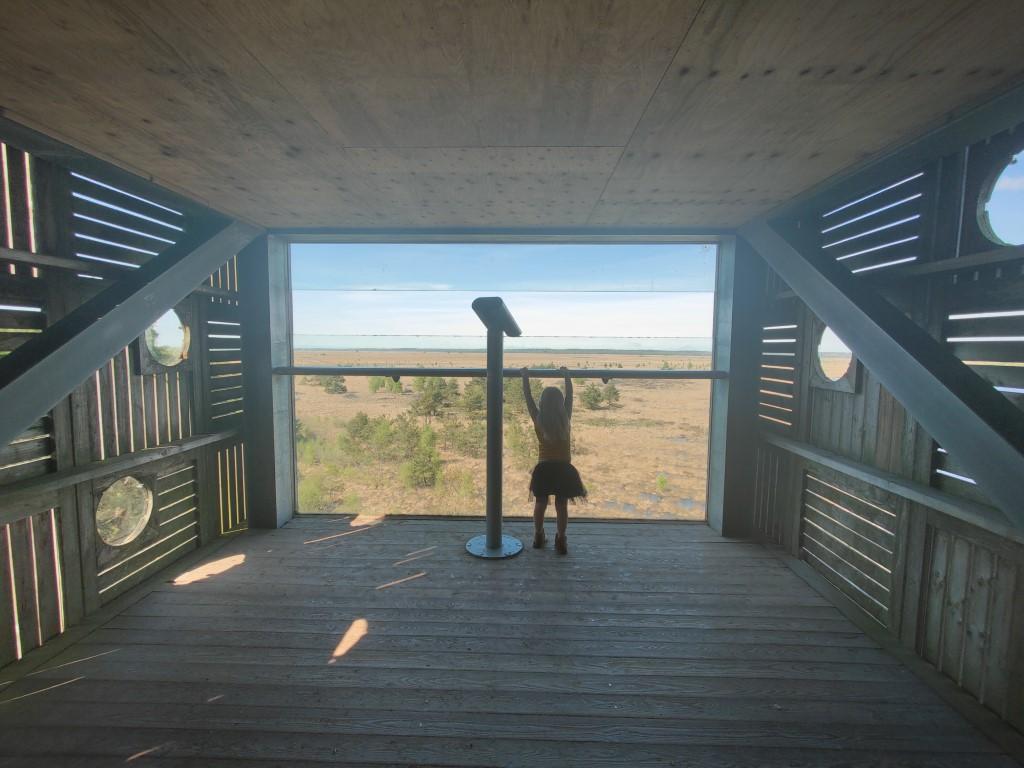 De zeven uitkijktoren Fochteloo Ravenswoude Drenthe Friesland
